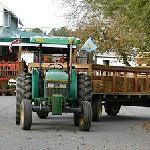 Fifer hay rides