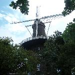 Le Moulin de mon coeur