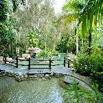Stunning gardens compliment the surroundings at Kewarra Beach Resort