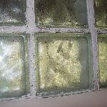 mold around glass block in shower