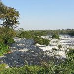 Photo of Chobe Safari Lodge