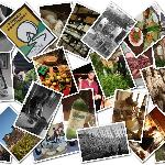 Foto di ExperienceIt Adventures Adventures Food, Wine and Cycling Tours