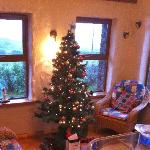 Christmas tree in the sun room
