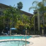 amazing pool/jacuzzi