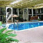 Indoor Heated Pool, Kiddie Pool & Whirlpool