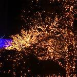 ロッテホテルソウル旧正月までこんな感じです。