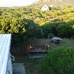 The brai and backyard