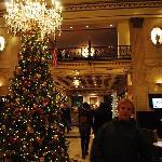 L'albero di Natale era invece splendido