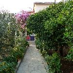 lemon tree lined path to apartments