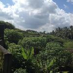 Aum Villa Photo