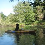 sunny day, cold water, but who can turn down free use of the kayaks