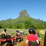 One of our exciting excursions on Moorea: an ATV trek of the island