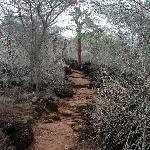 Hike to Las Grietas