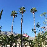 Palm Springs
