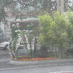 Street gardens in Chengdu.