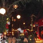 Chinese lanterns for NYE