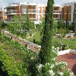 Neighbouring Gardens
