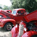 Enjoy classic car shows monthly when you stay at the Hampton Inn Leesburg.