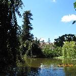 La Villa Serra sullo sfondo
