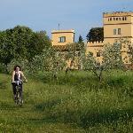 Disfrutando de un paseo en bici