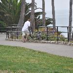 Nice sidewalks for strolls above the shore.