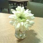 Nice touch for the dining area-fresh flowers