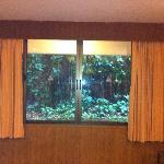 finestra finta