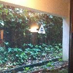 finestra finta 2