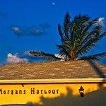 Morgans Harbour