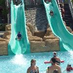Awesome dual kids slide for the little ones.