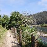 camino del hotel a la playa de Cueva ( Caner-Asturias )