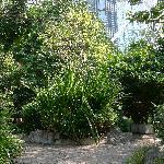 Cheung Kong Park