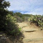 Palos Verdes Shoreline Park