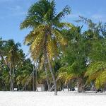 Saona Paradise