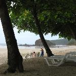 Shaded area with trees at Playa Grande