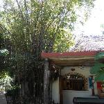 Cafe & Gift Shop in Hotel Palapas (adjoining hotel)