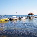 El Pescador Boats