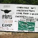 Bird Safari Camp Foto