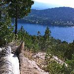 Blick auf den See während des Ausritts auf der Bergroute