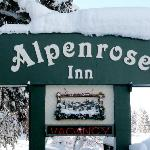 Winter Welcome to Alpenrose Inn!Wonderland!