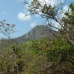 Foto de Altos De Campana National Park