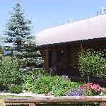 One Bedroo Cabin