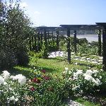 The Pergola garden