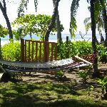 Seaside hammocks!!!!