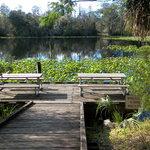Al Lopez Park Photo