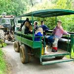 Help Feed the Animals and Enjoy Tractor Rides