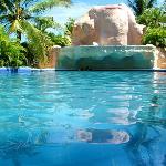 Pool 3 - Adult Pool