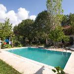 Jennys House swimming pool!