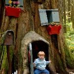 Child in Stump House