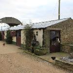 The farmyard